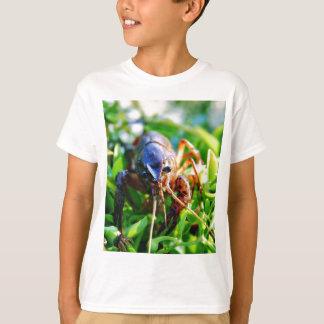 Crawfish Crawdads Crayfish T-Shirt
