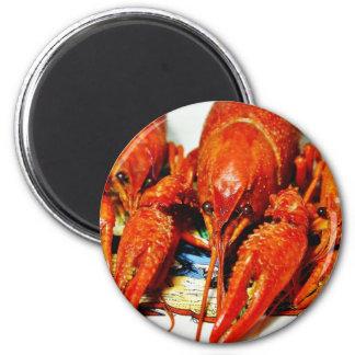 Crawfish Crawdads Craytfish Magnet