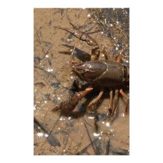 Crawfish in Pond in Alabama Stationery