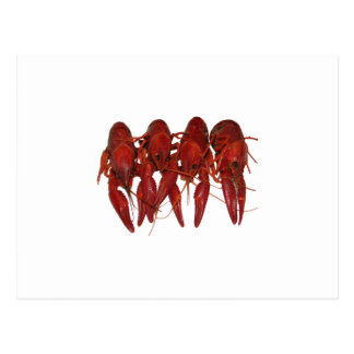 Crawfish Logo (untitled) Postcard
