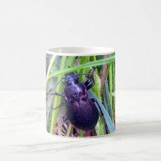 Crawling Beetle Mug