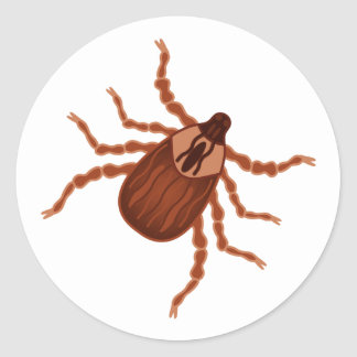 Crawly Realistic Tick Illustration Stickers