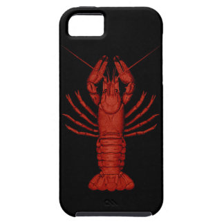 Crayfish iPhone SE/5/5s Case