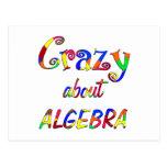 Crazy about Algebra Postcard