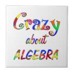 Crazy about Algebra Tiles