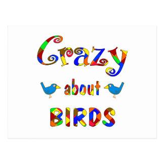Crazy About Birds Postcard
