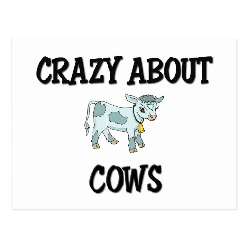 Crazy About Cows Post Cards