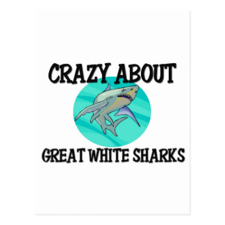 Crazy About Great White Sharks Post Cards