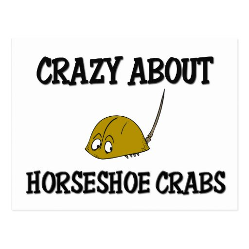 Crazy About Horseshoe Crabs Postcard