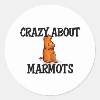 Crazy About Marmots Sticker