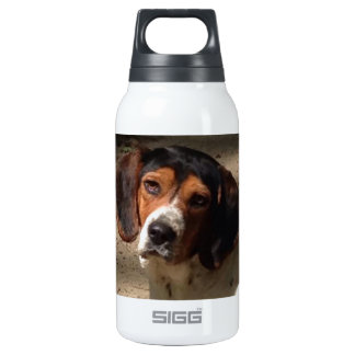 Crazy About My Beagle 10 Oz Insulated SIGG Thermos Water Bottle