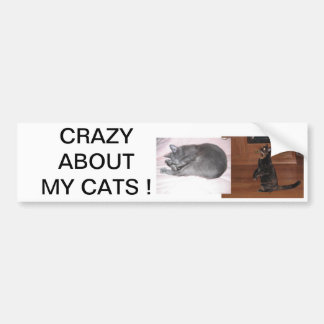 CRAZY ABOUT MY CATS ! CAR BUMPER STICKER