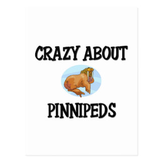 Crazy About Pinnipeds Post Card