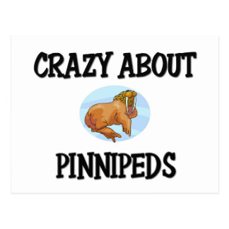Crazy About Pinnipeds Post Cards
