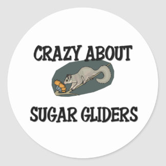 Crazy About Sugar Gliders Classic Round Sticker