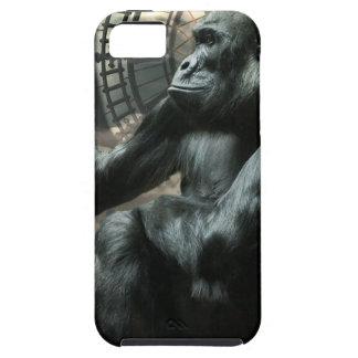 Crazy Ape Gorilla Animal iPhone SE/5/5s Case