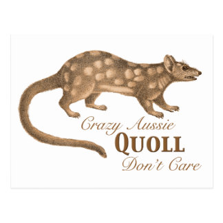 Crazy Aussie Quoll Don't Care - Australian Humor Postcard