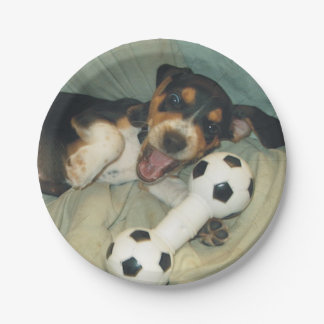 Crazy Beagle Pup Soccer Toy Paper Plate