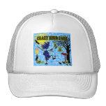 Crazy Bird Lady Design Trucker Hats