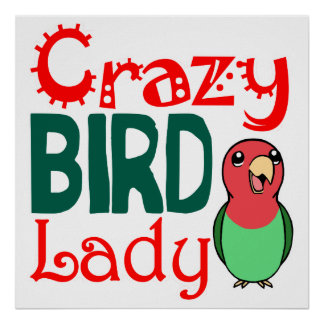 Crazy bird lady poster