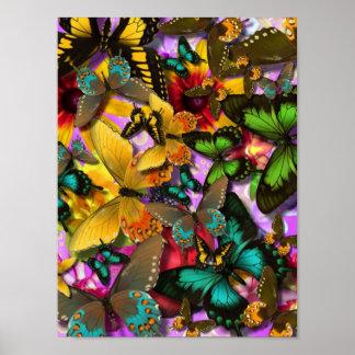 Crazy Butterflies Poster