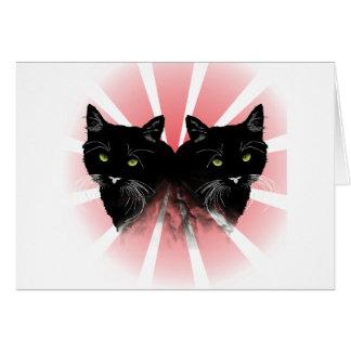Crazy Cat Cards