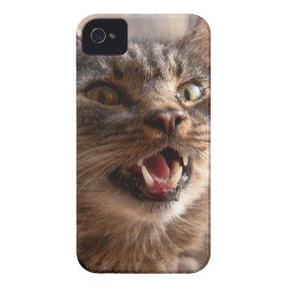 Crazy cat iPhone 4 case