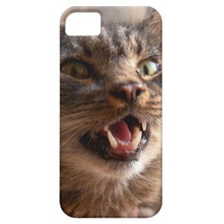 Crazy cat iPhone 5 case