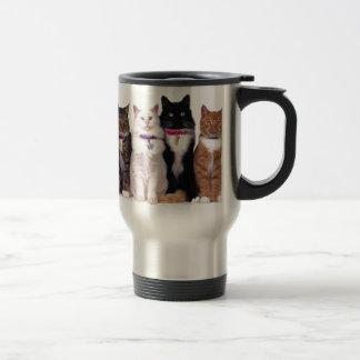 crazy cat lady cats coffee mug