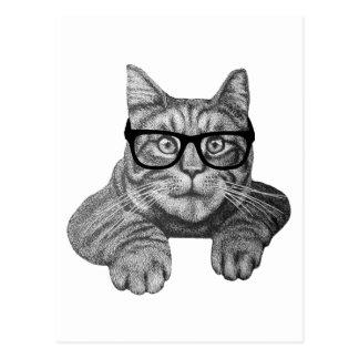 crazy cat lady geek cat postcard