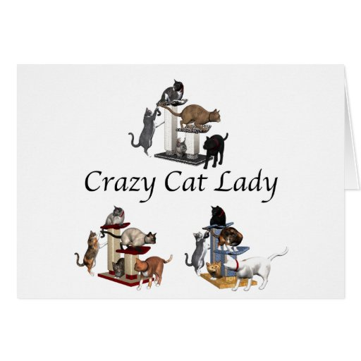 dating blog crazy cat lady Debbie loves cats, and her video below is proof yes, it's a spoof eharmony doesn't have video profiles, but this woman is good, and we love it.