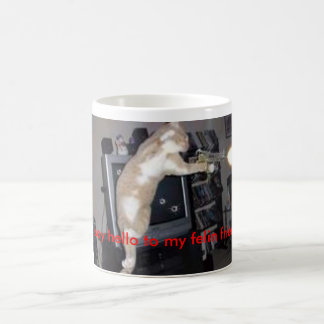 crazy cat, say hello to my felin friend coffee mug