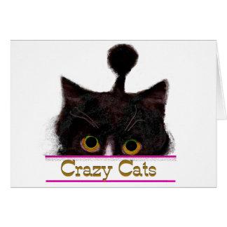 CRAZY CATS CARD