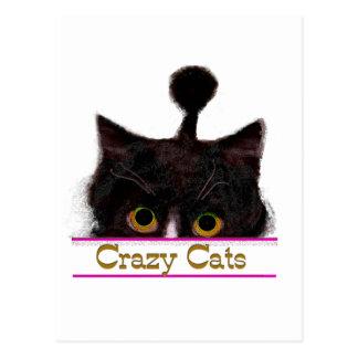 CRAZY CATS POSTCARD
