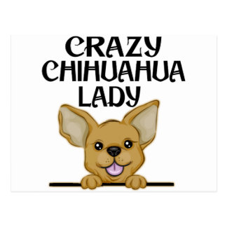 Crazy Chihuahua Lady Postcard