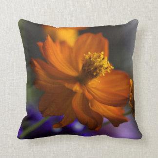 Crazy Cosmos Accent Pillow