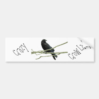Crazy Crow Lady Bumper Sticker