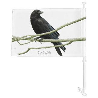 Crazy Crow Lady Car Flag