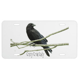 Crazy Crow Lady License Place License Plate