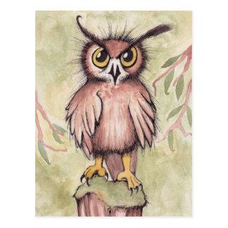 Crazy Cute Owl Postcard