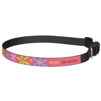 Crazy Daisy Identification Pet Collar