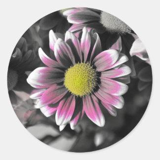 Crazy Daisy Sticker, Glossy Classic Round Sticker