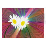Crazy Daisys Greeting Card