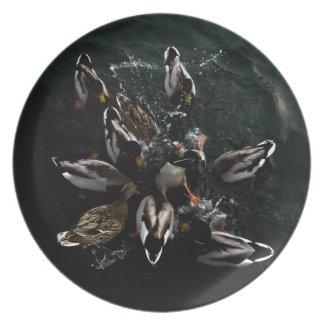 crazy ducks plate
