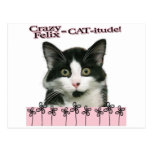 Crazy Felix CAT-itude in Pink Postcard