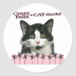 Crazy Felix CAT-itude in Pink Round Stickers