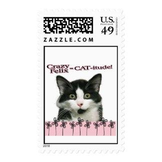Crazy Felix CAT-itude in Pink Stamps