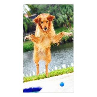 Crazy flying Golden Retriever Business Card Templates