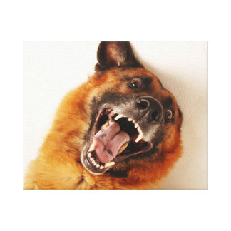 Crazy funny dog canvas print