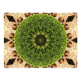 Crazy Green Kaleidoscope Postcard